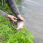 20160710_Fishing_Grushvytsia_036.jpg