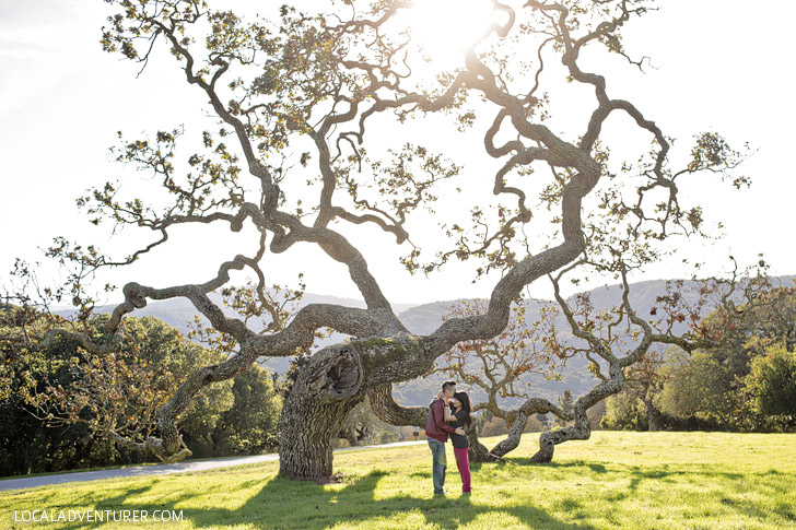 Carmel Valley (15 Popular Weekend Trips from Los Angeles to Take Now).