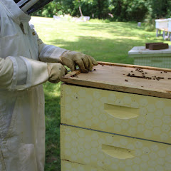 PLC Honey Fiesta 7/10/16 - IMG_3576.JPG