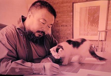 ai weiwei_cat 2