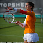 Andrea Petkovic - Topshelf Open 2014 - DSC_7467.jpg