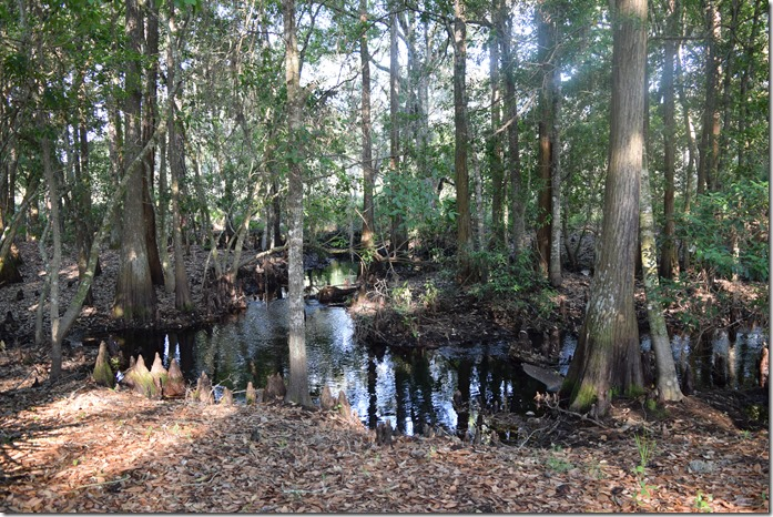 Big Creek-2