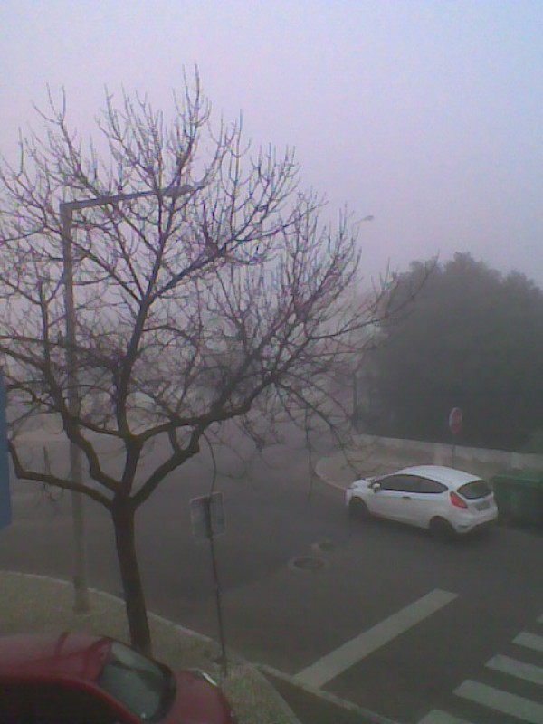 ..another fog day..1..