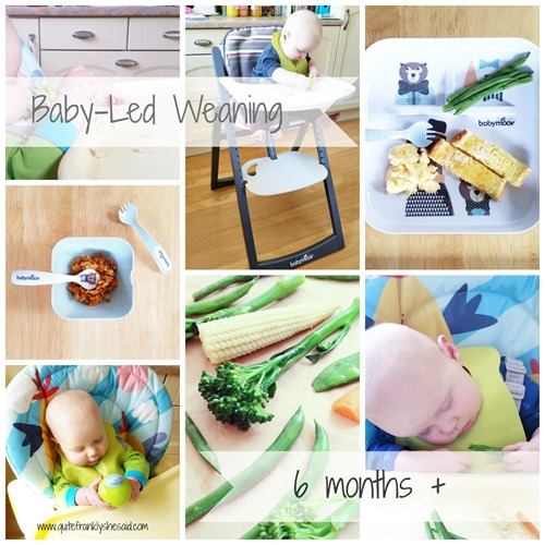 baby-led weaning 6 months