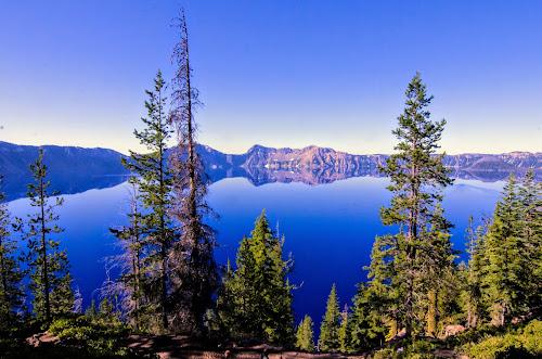 Oregon Honeymoon