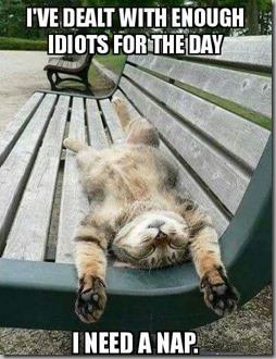 need a nap - idiots