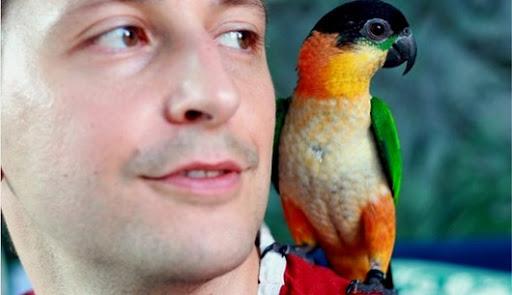 sania vtáky videá