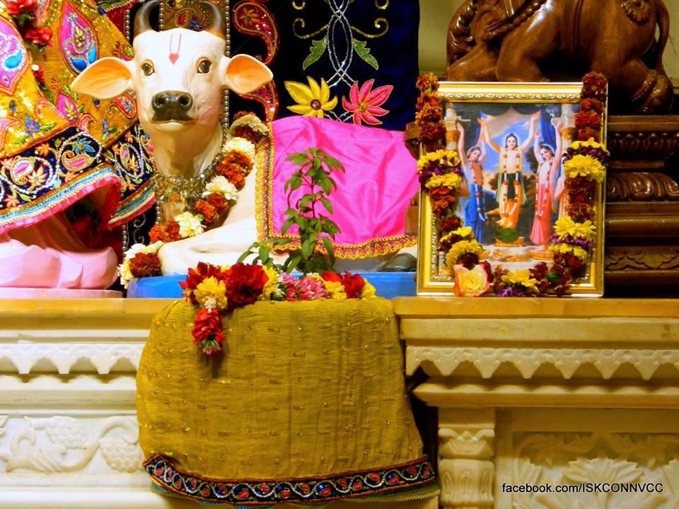 ISKCON Pune Deity Darshan 21 Dec 2015  (10)