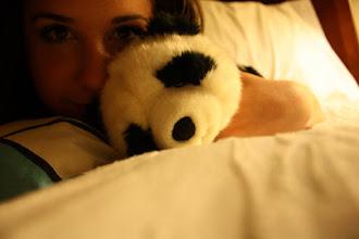 Photo: I bought a stuffed panda at 18 years old. Unashamed.