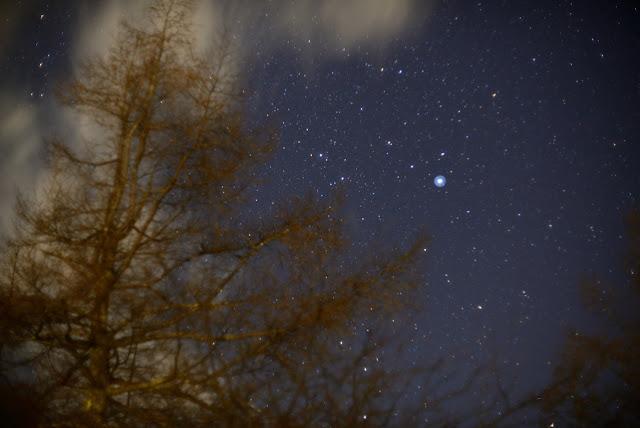 ニコンD610 甘利山 星