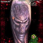 O-predador-Tattoo-47.jpg