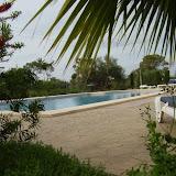 pool_56.jpg