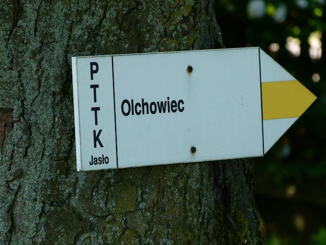 Wycieczka Olchowiec - P1160369.JPG
