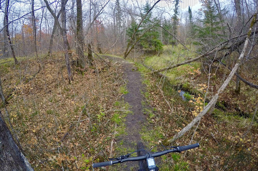 Checking out a section of the new mountain bike trail