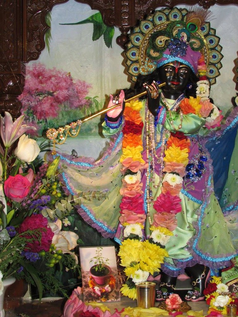 ISKCON New Goloka Deity Darshan 11 Dec 2016 (14)