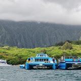 06-18-13 Waikiki, Coconut Island, Kaneohe Bay - IMGP7019.JPG