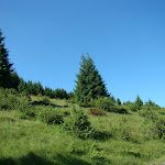 Nízke Tatry 013 (800x600).jpg