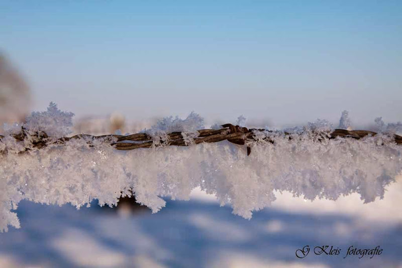 Winter - Winter-041.jpg