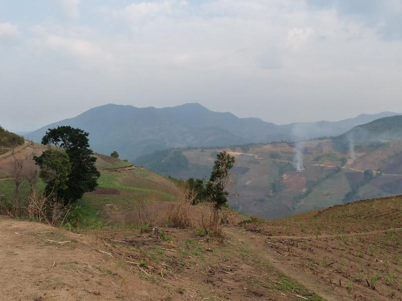 Chine: randonnée xishangbanna, région de Bada - Picture1%2B954.jpg