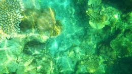 ngebolang-pulau-harapan-5-6-okt-2013-pen-03