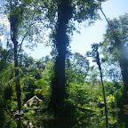 Zona del puerto del manglar