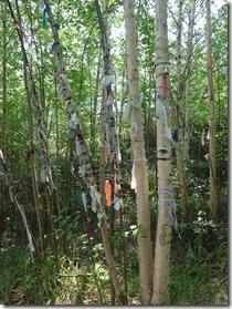 arbres à rubans Goudjekit