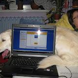 Wieczór komputerowy (31.10.2009r.)