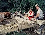 On the Carriage after the cattle market.  Romania, Maramures, 2002