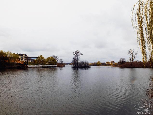 lacul mogosoaia