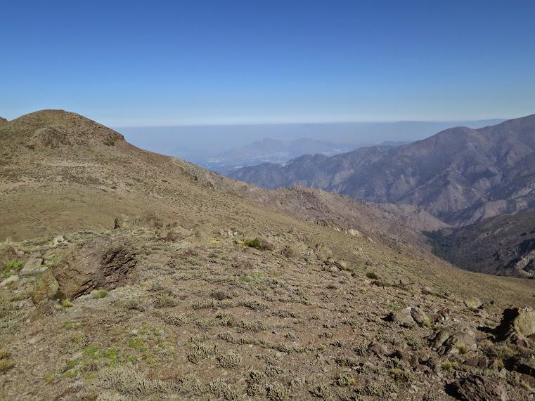 20150329 - CHILE - CERRO CANOITAS. IMG_0027