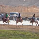 Egypte-2012 - 100_8811.jpg