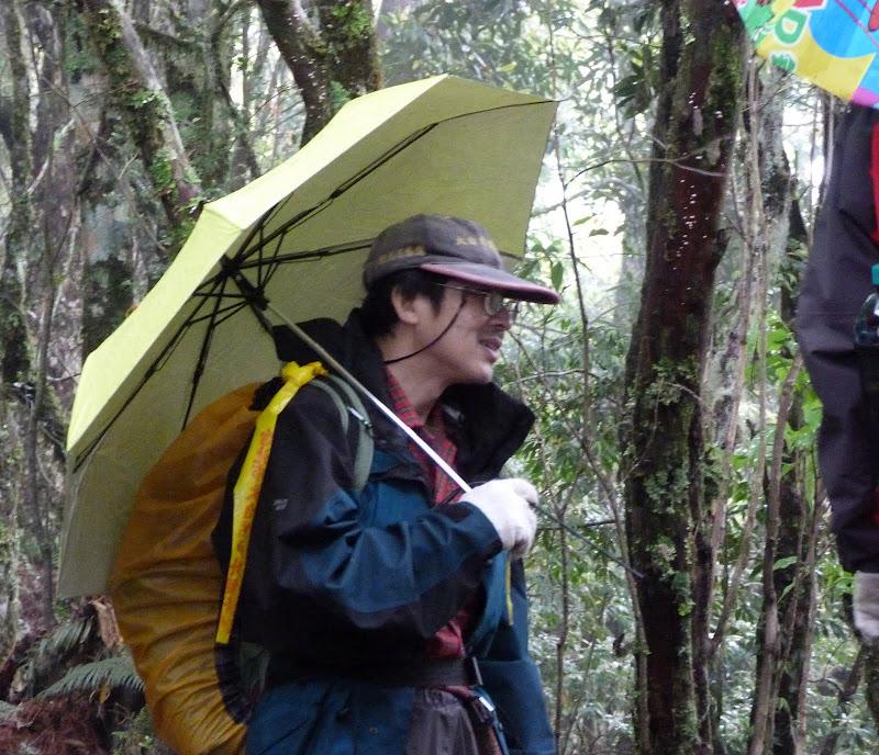 TAIWAN. Weekend Randonnée, Taipei à  Hehuanshan en passant par Puli, retour par les gorges de Taroko - P1280949.JPG