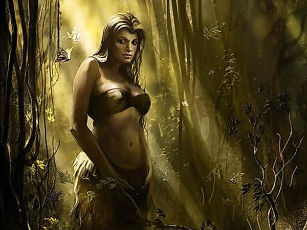 Warrior In Magical Wood, Warriors 2