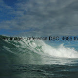 DSC_4686.thumb.jpg