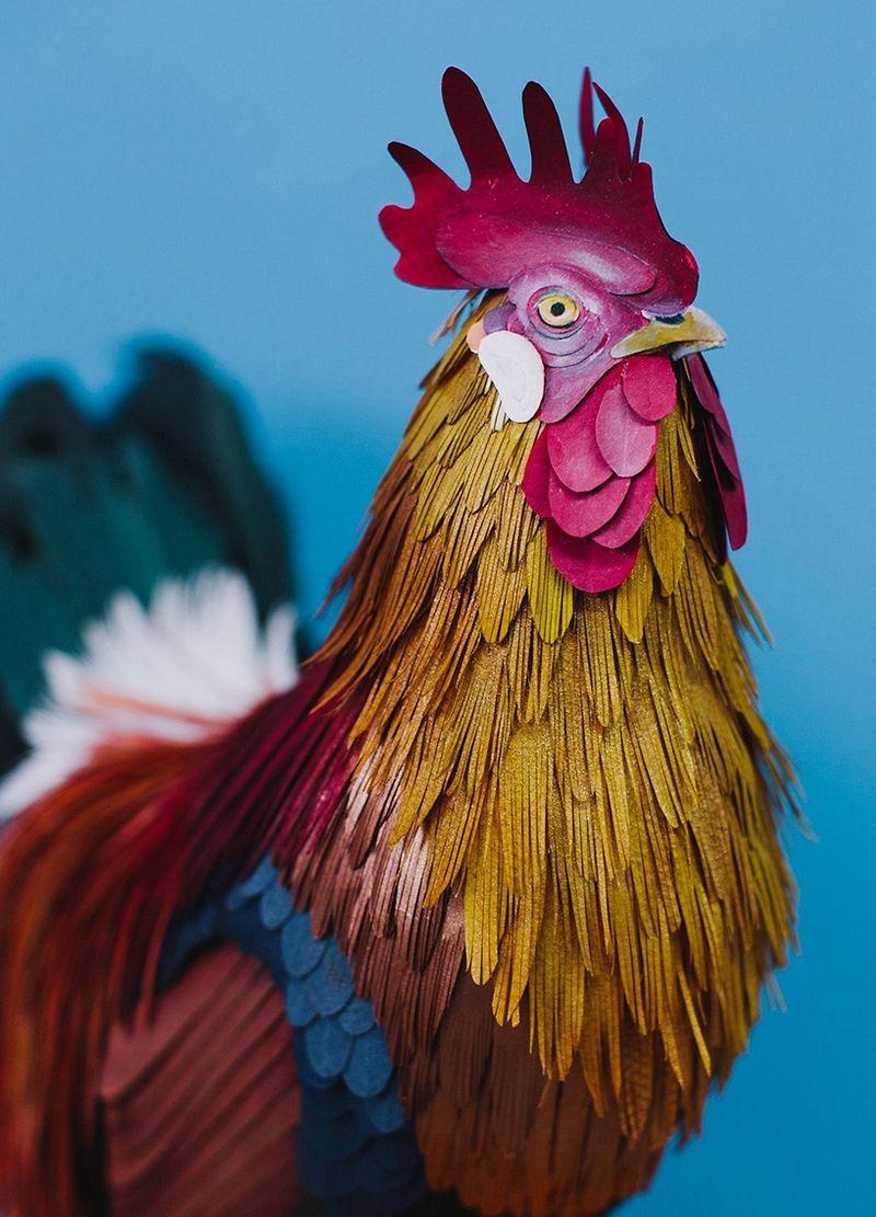 diana-beltran-herrera-birds-22