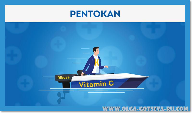 ПентоКан / PentoKan