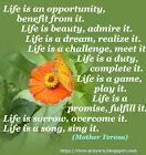 life-is.jpg