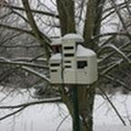 tn_lachaux-2010-12-05.jpg