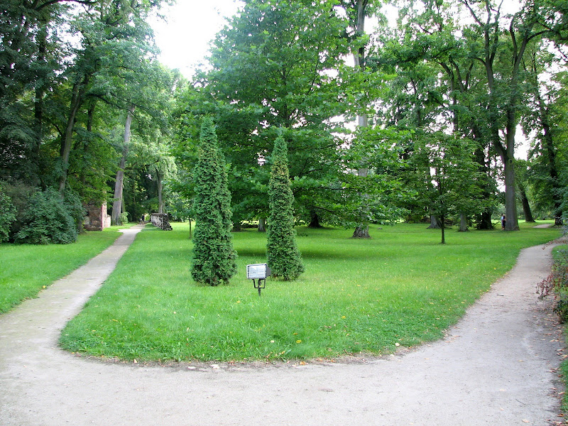 Czersk, Nieborów, Arkadia - img_6195.jpg