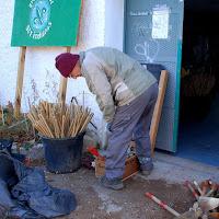 Plantación en el Arroyo del Moralejo - 15 de diciembre de 2013