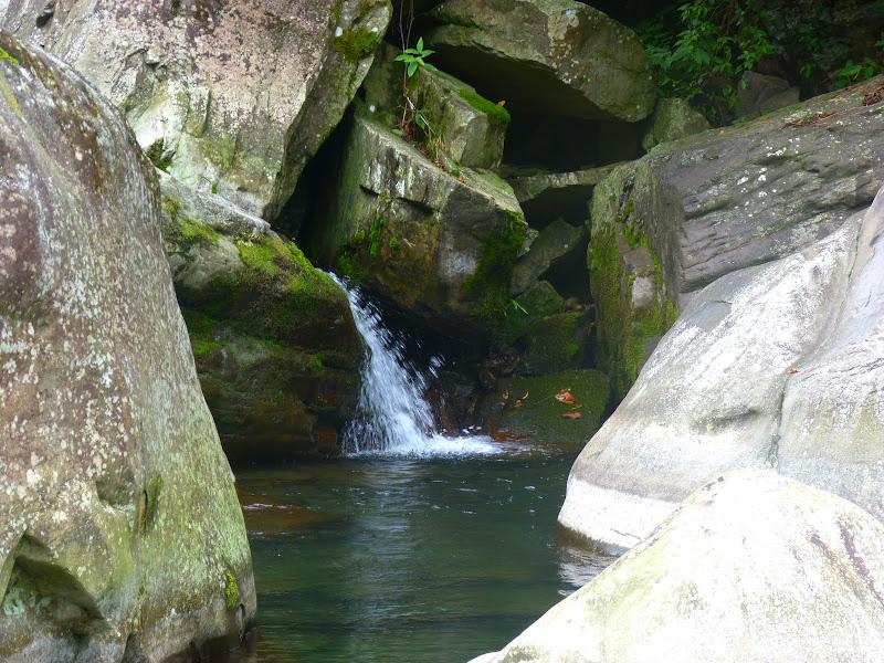 Petite randonnée au sud de Taufen, dans la région de Miaoli - P1330631.JPG