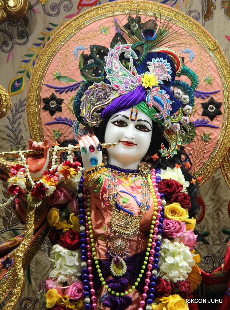 ISKCON Juhu Sringar Deity Drashan on 17th Jan 2017 (25)