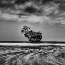 by Setiawan Halim - Black & White Landscapes (  )