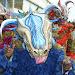 Tercer Domingo carnaval Salcedo albun 2