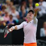 Simona Halep - Topshelf Open 2014 - DSC_7069.jpg