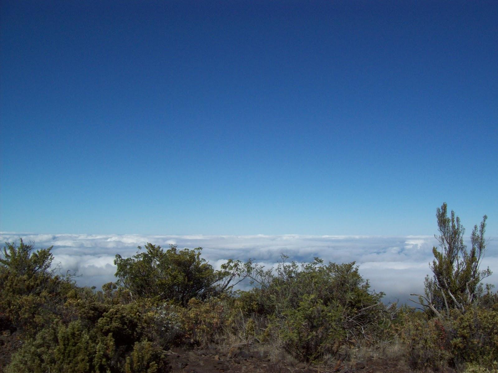 Hawaii Day 8 - 100_8041.JPG