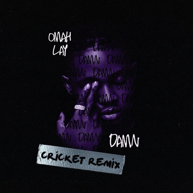 MUSIC: Omah Lay – Damn (Cricket Remix)
