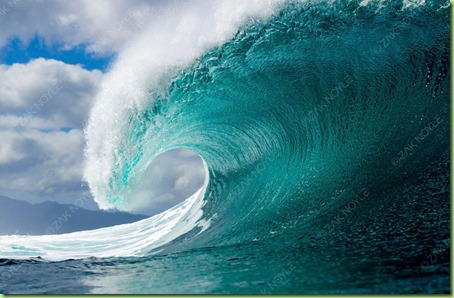 Zak_Noyle_Winter_Swell