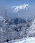 黒沢尾根(1550m地点)からの鹿島槍ヶ岳 標高2889m