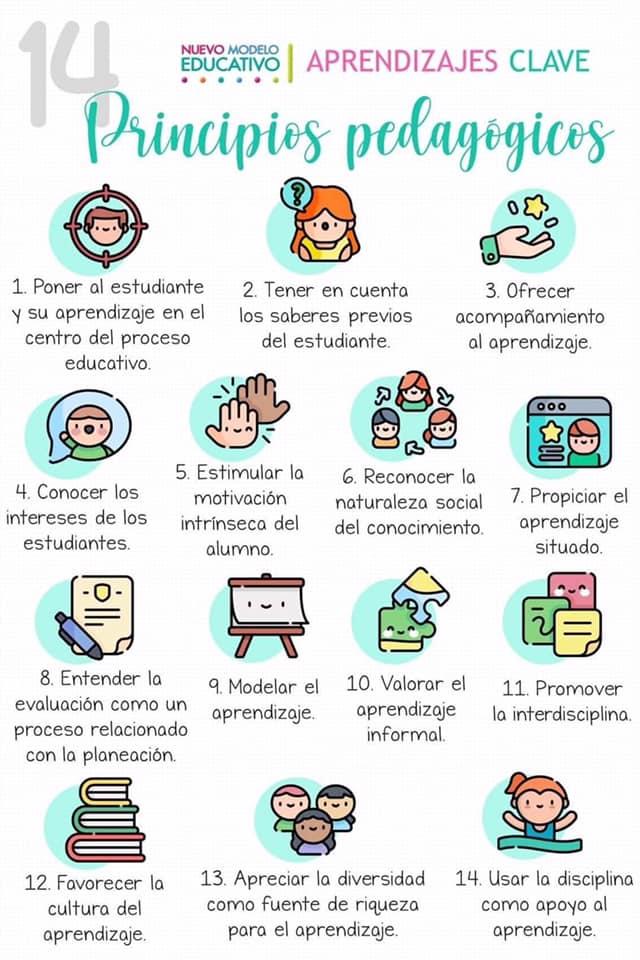 14 principios pedagogicos